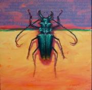 Beetle 8